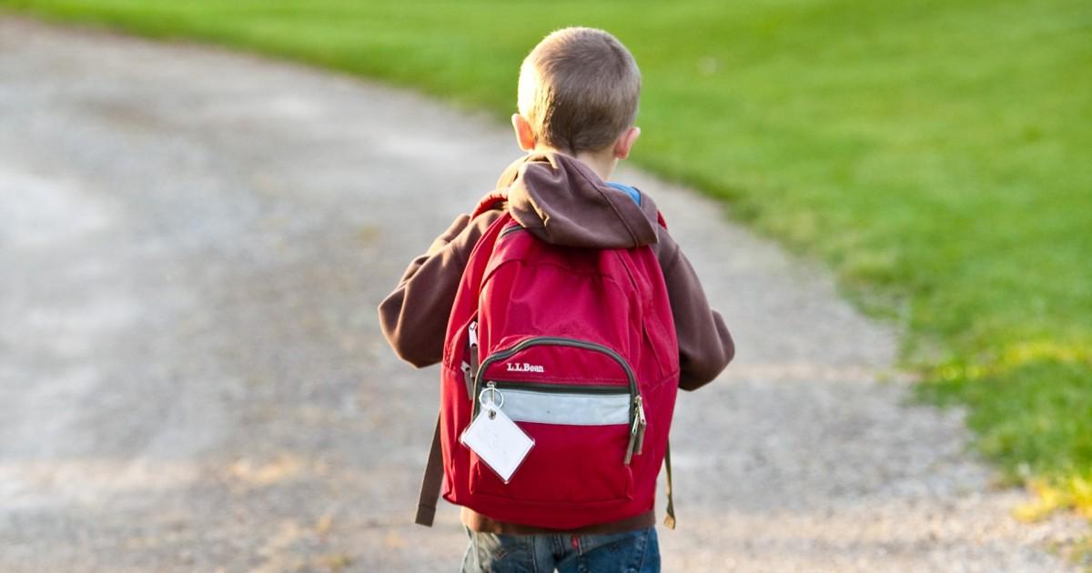 tratarea anxietății cu copiii plasturi de detoxifiere pret